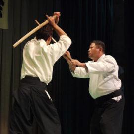 Ken Jutsu
